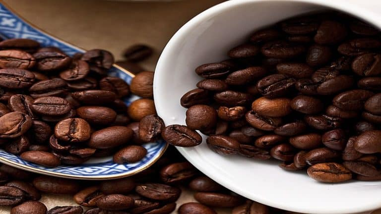 The Difference Between Italian Roast And French Roast - 3 Amazing Facts