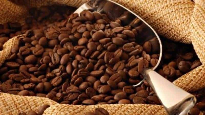 Cameroon Coffee: World's Strongest Coffee